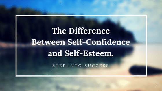 difference between self confidence and self efficacy Self-efficacy is confidence in the ability to control one's motivation, behavior,   the resulting lack of sensitivity to differences in self-efficacy limit predictions of.